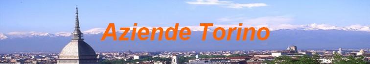 Aziende Torino directory